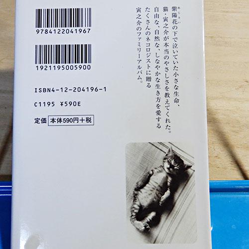 吉田ルイ子の画像 p1_37