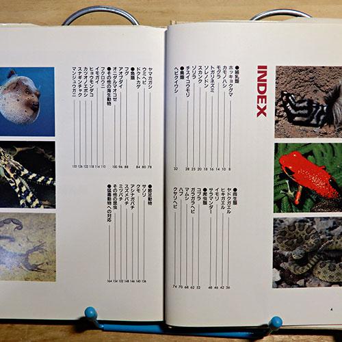 今泉忠明『猛毒動物の百科』