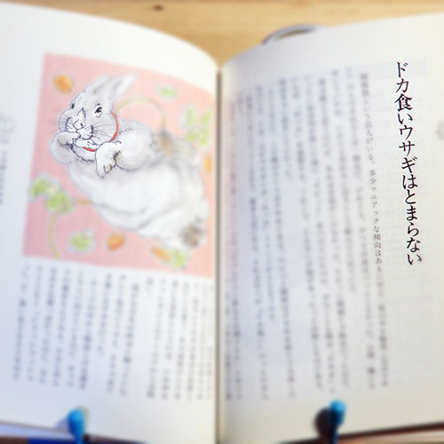 オバタカズユキ『ペットまみれの人生』