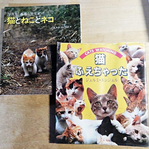 ジェルミ・エンジェル『猫ふえちゃった』『猫とねことネコ』