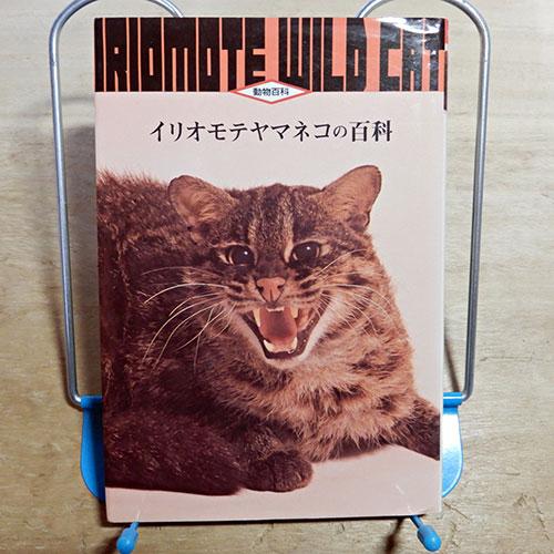 動物百科『イリオモテヤマネコの百科』