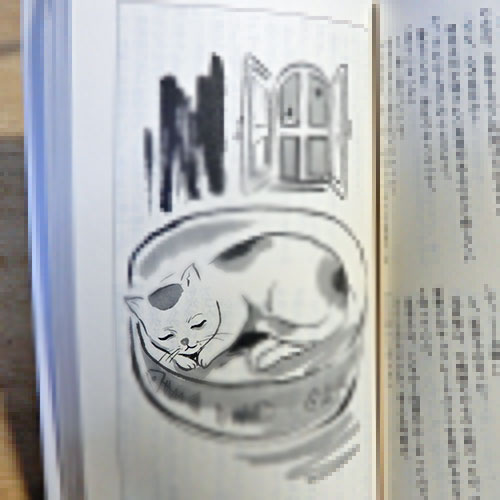 赤川次郎『三毛猫ホームズの暗黒迷路』