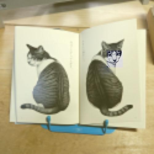 與倉豪『猫』
