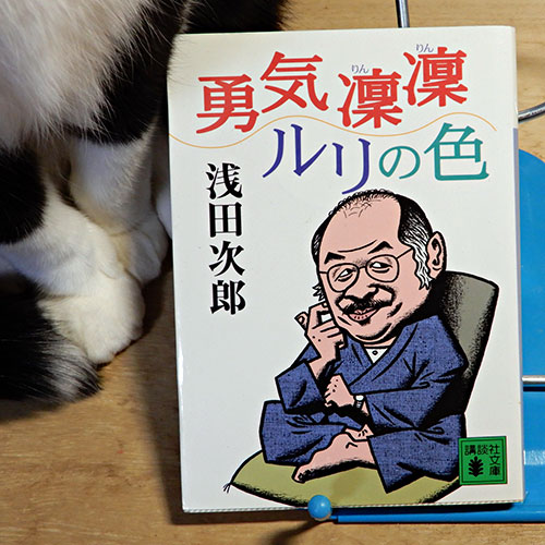 浅田次郎『勇気凛々ルリの色』