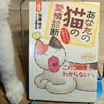 加藤由子『あなたの猫の愛情診断』