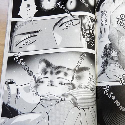 田村由美『猫mix幻奇譚とらじ』