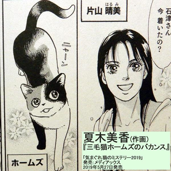 原作:赤川次郎『三毛猫ホームズのバカンス』