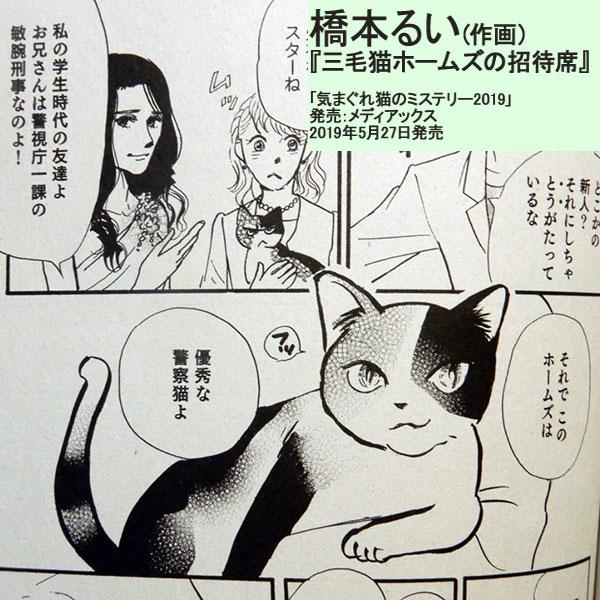 原作:赤川次郎『三毛猫ホームズの招待席』