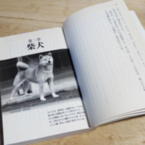 日本犬 血統を守るたたかい