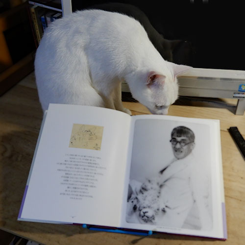 藤田嗣治・画文集『猫の本』