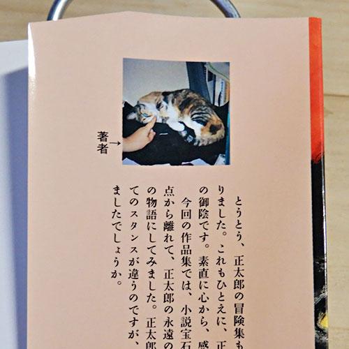 柴田よしき『猫はこたつで丸くなる』