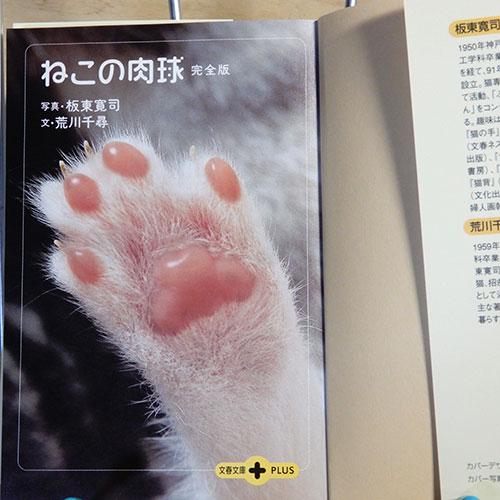 坂東寛治『ねこの肉球 完全版』