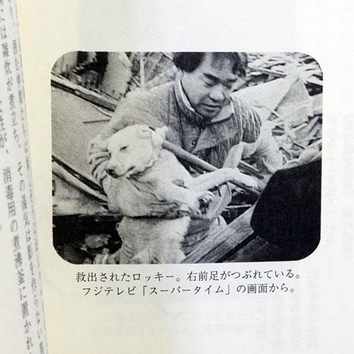 北浦清人『幸せをつかんだ犬たち』