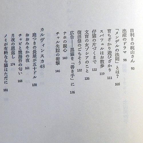 工藤久代『ワルシャワ猫物語』