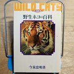 今泉忠明『野生ネコの百科』