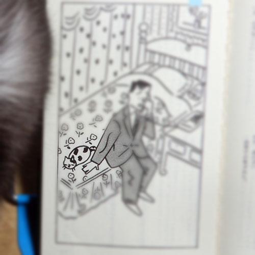 赤川次郎『三毛猫ホームズの犯罪学講座』