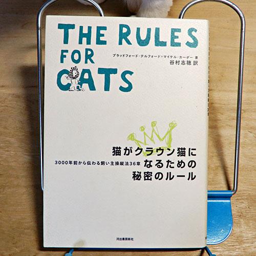 『猫がクラウン猫になるための秘密のルール』