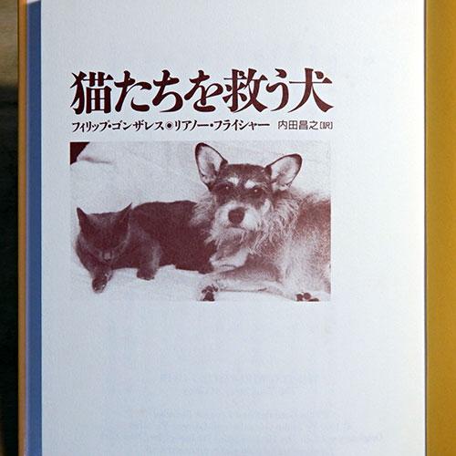 ゴンザレス/フライシャー『猫たちを救う犬』