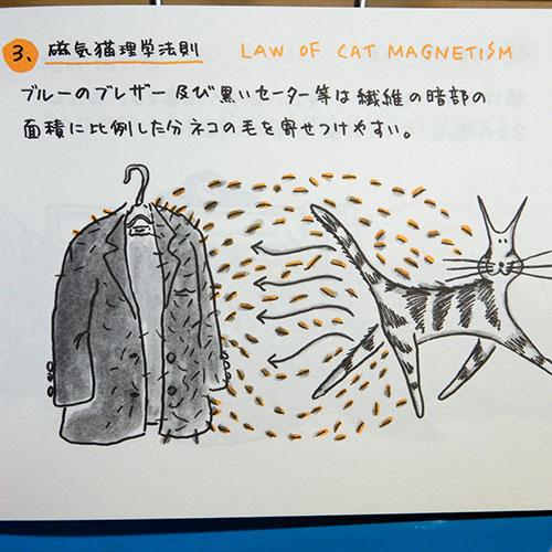 メンデンホール『わがはいはネコであるの法則』