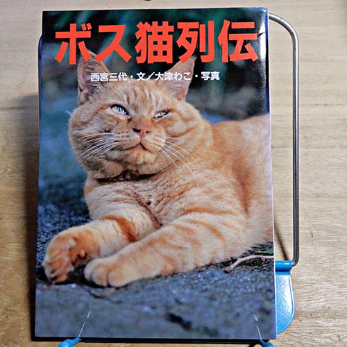 西宮三代『ボス猫列伝』