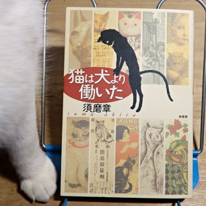 須磨章『猫は犬より働いた』