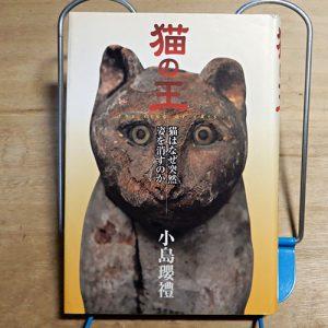 小島瓔ゆき『猫の王』