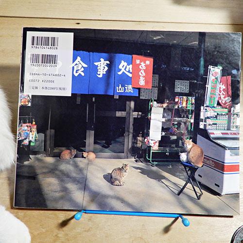 岩合光昭『ニッポンの猫』