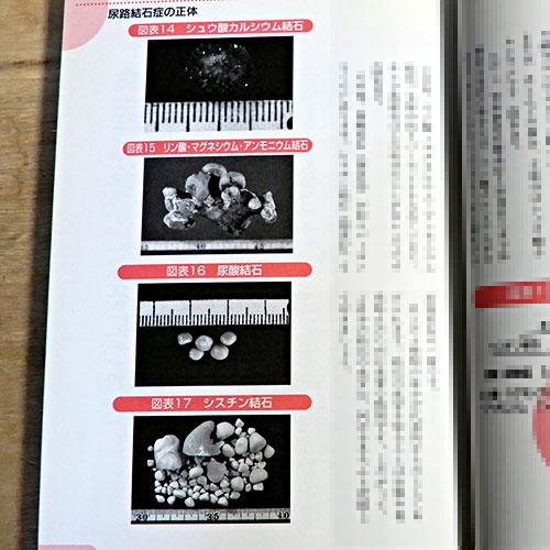 伊藤晴夫/成田和子『尿路結石症の治療と食事療法』