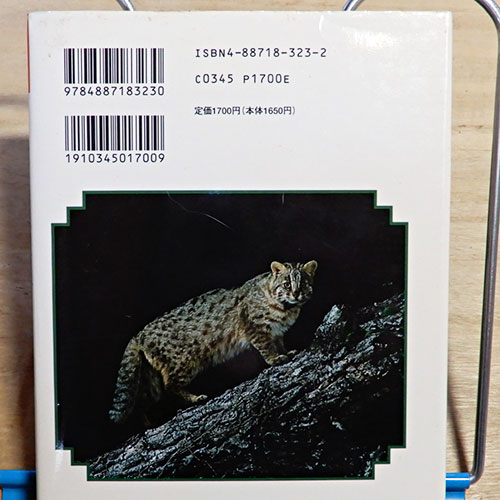 動物百科『ツシマヤマネコの百科』