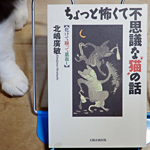 北嶋廣敏『ちょっと怖くて不思議な猫の話』