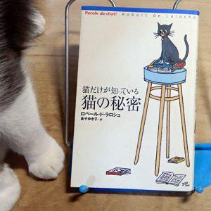 ラロシュ『猫だけが知っている猫の秘密』