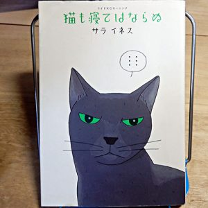 サラ・イネス『猫も寝てはならぬ』