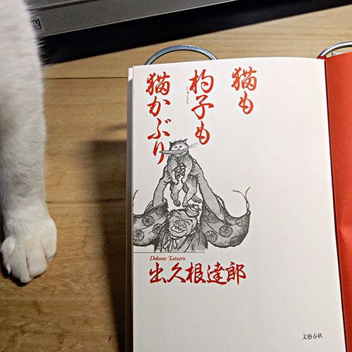 出久根達郎『猫も杓子も猫かぶり』