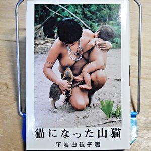 平岩由伎子『猫になった山猫』