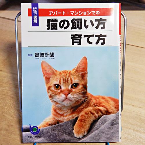 ひと目でわかる!図解『アパート・マンションでの猫の飼い方育て方』