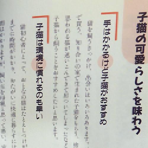 桜井幸子監修『うちの猫がいちばん!子猫の育て方』