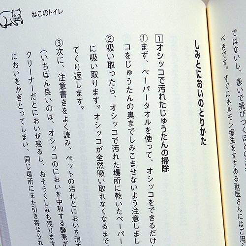 パム先生の『ねこみゅにけーしょん 第2巻 ねこライフ編』