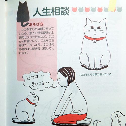 ミケネット『ネコちゃんとあそぼう!