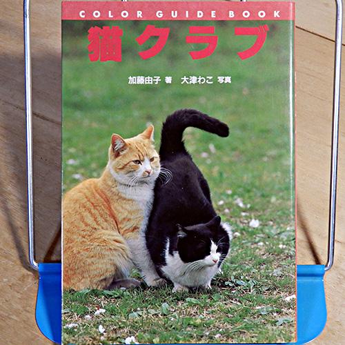 加藤由子『猫クラブ』