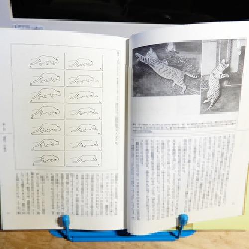 ライハウゼン『ネコの行動学』