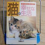 加藤由子『猫の幸せな生活』