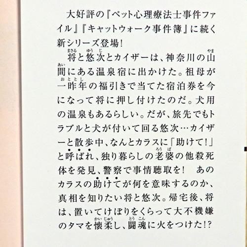 新田一実『キャットテールレポート No.1』