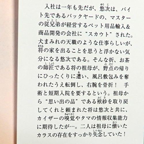 新田一実『キャットテールレポート No.2』