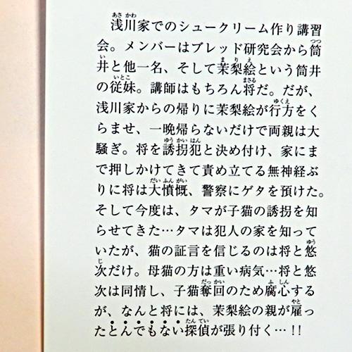 新田一実『キャットテールレポート No.3』