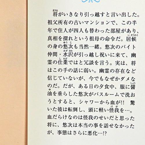 新田一実『キャットテールレポート No.4』