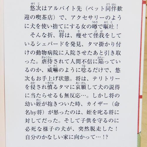 新田一実『ペット心理療法士 事件ファイル No.6』