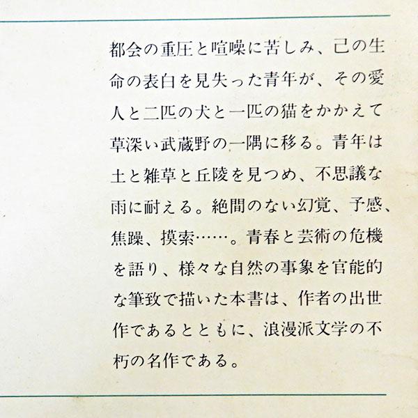佐藤春夫『田園の憂鬱』