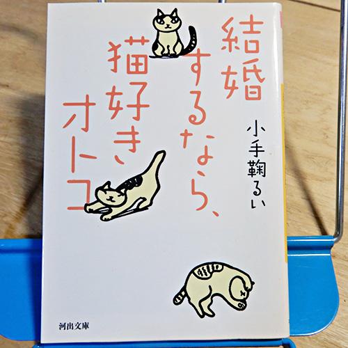 小手鞠るい『結婚するなら、猫好きオトコ』