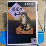 小池真理子『深夜のネコ』