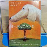 ケイ『白い犬とワルツを』
